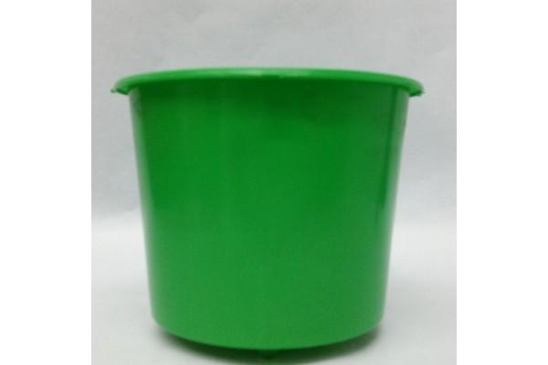 Cubeta Polillero